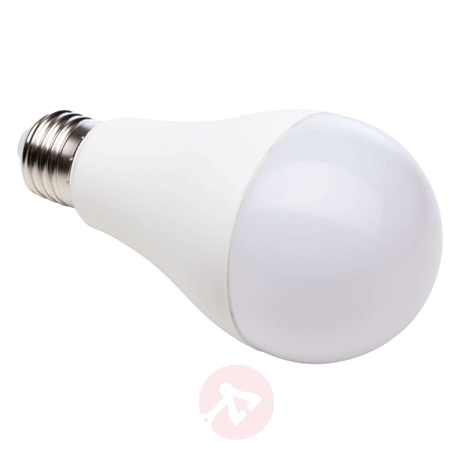 Ampoule LED mate E27 13 W 927-6520265-01