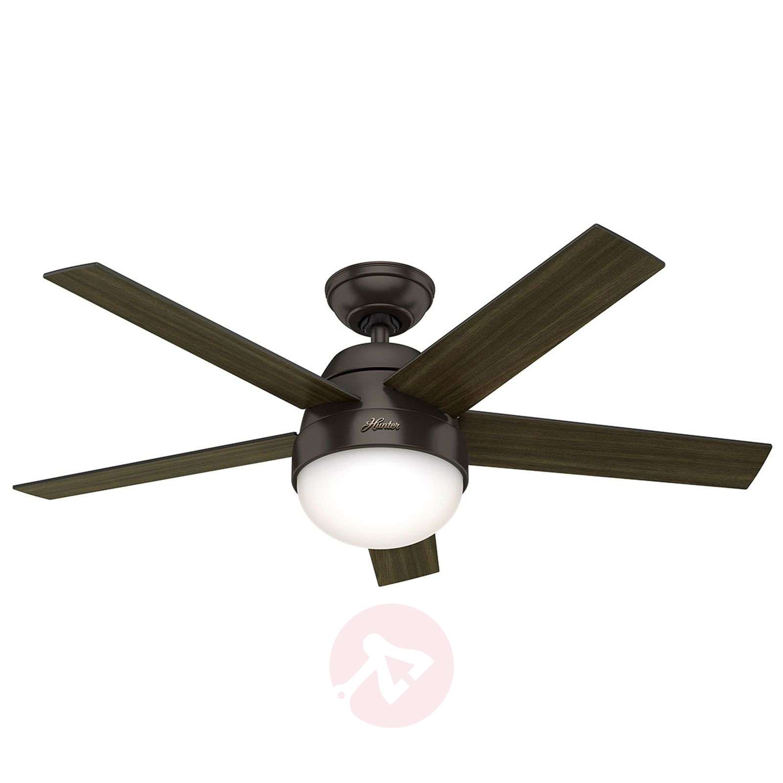 Hunter Stile ventilateur éclairage noyer/noyer-4545039-01