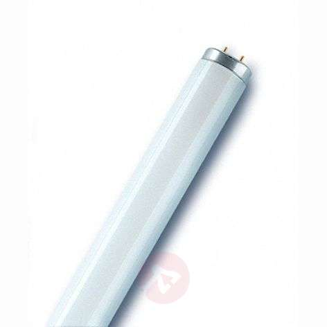 G13 T12 Tube fluorescent Type SA