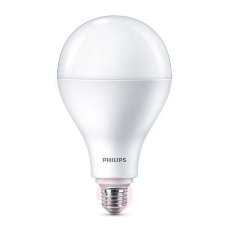 Philips ampoule LED E27 A110 30 W mate 2 700 K