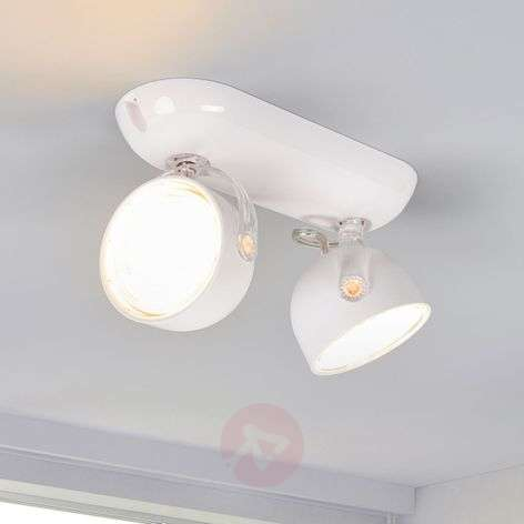 Spot LED inclinable Dyna à 2lampes, blanc