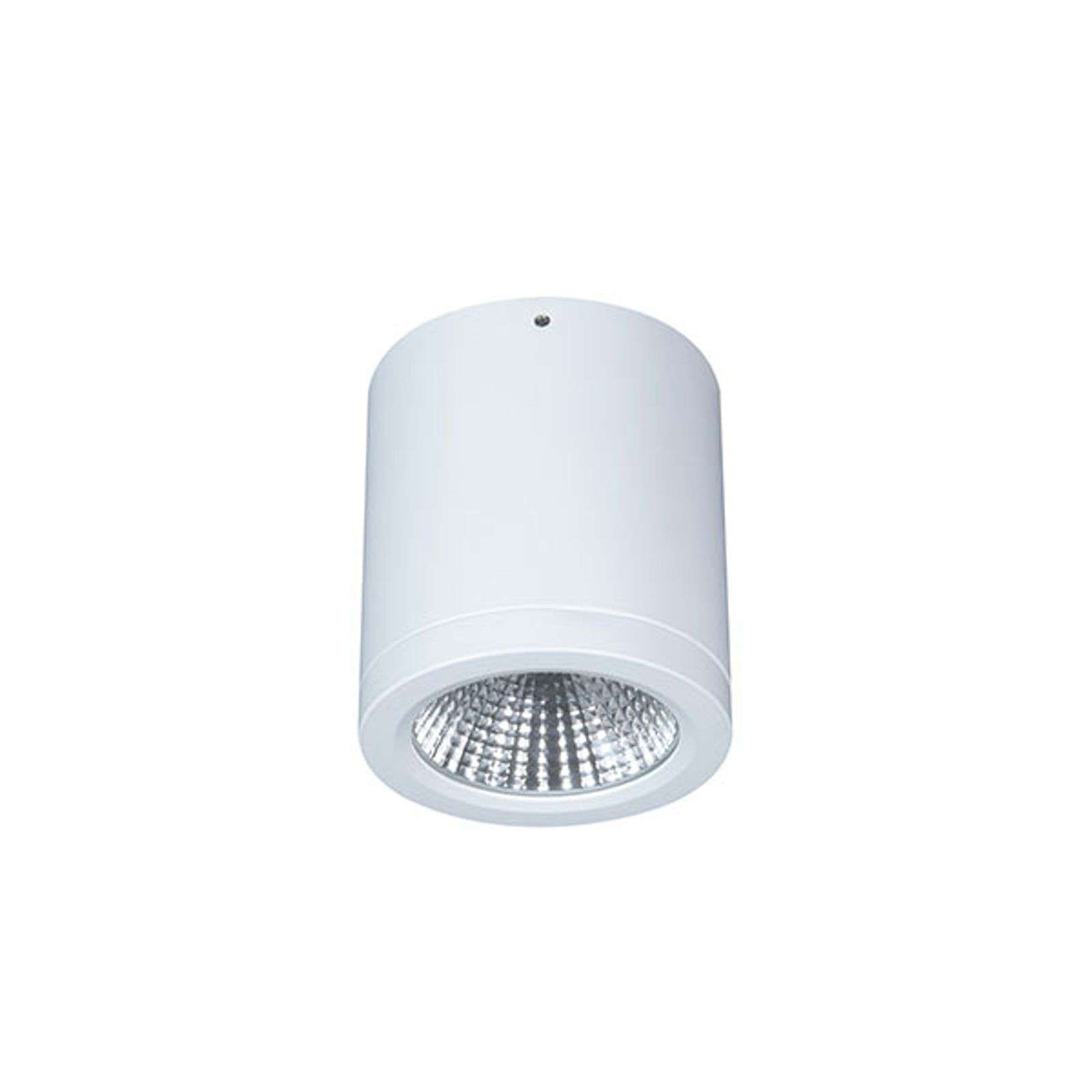 Downlight LED Button Mini 100 IP54 55° 16 W