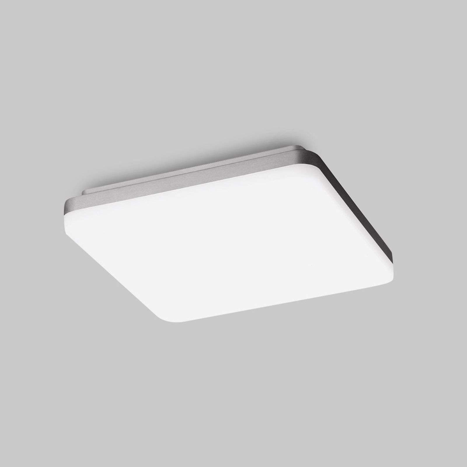 Applique LED WL210 carrée opale 4 000 K