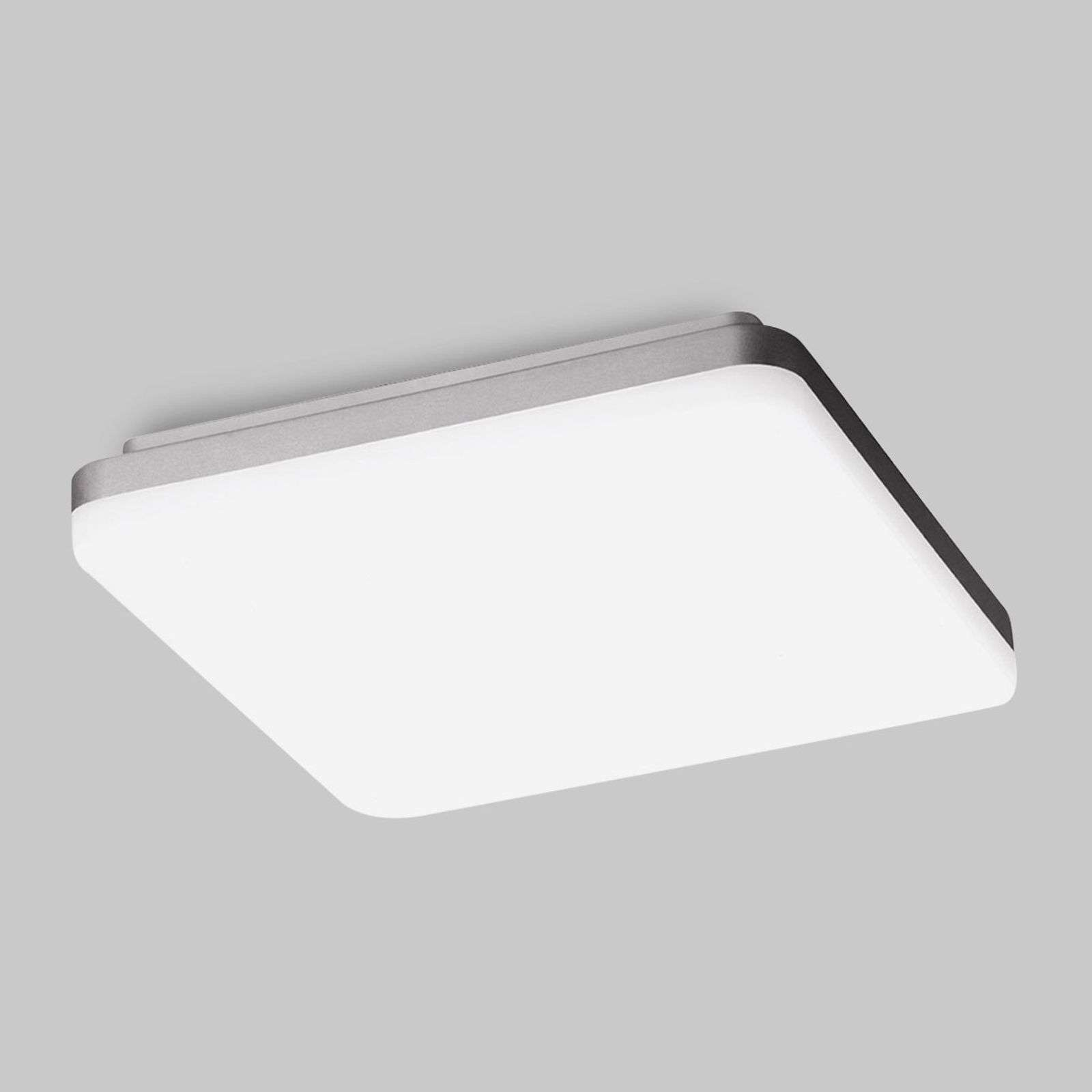Applique LED WL260 carrée opale 3 000 K